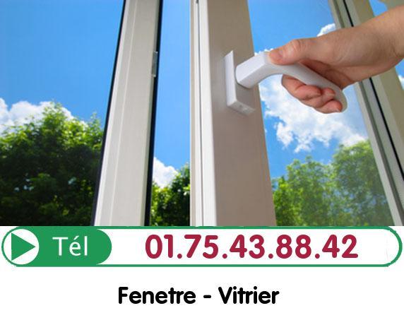 Changement de Fenetre Noiseau 94880